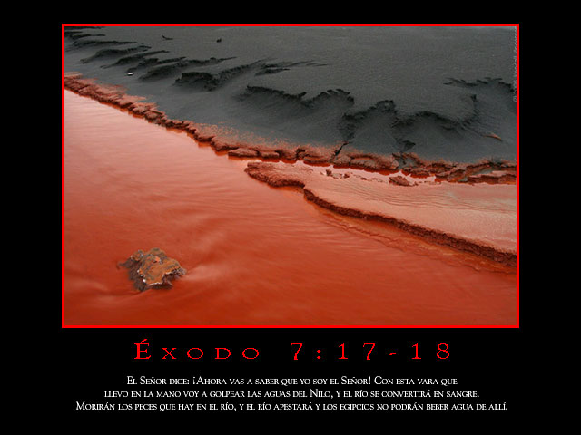 Éxodo 7:17-18