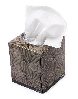 English: A small box of Kleenex.
