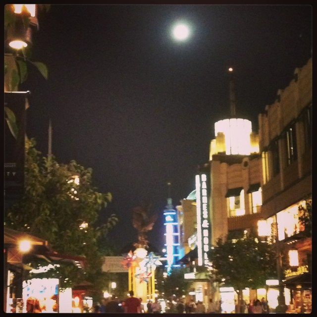 Full Moon Over the Grove