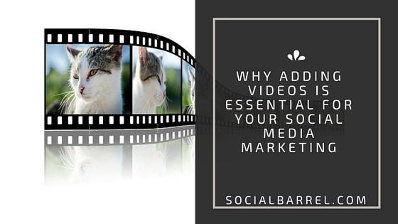 Why Adding a Video is Crucial to Your Social Media Marketing?