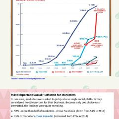 The Most Powerful Social Media Platform [Infographic]
