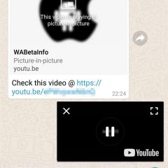WhatsApp rolls out the Picture in Picture feature Android users