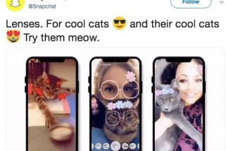 Snapchat Added New Selfie Filters … for Your Cat