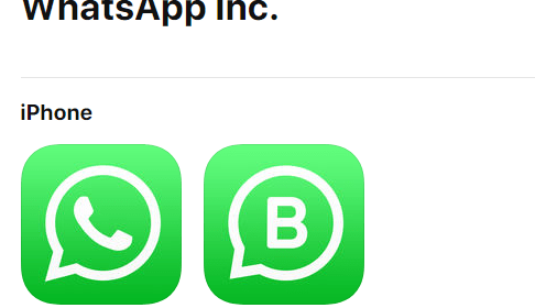 WhatsApp Business rolling out on iOS