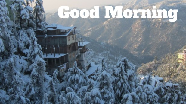 Good Morning Image|Wallpaper