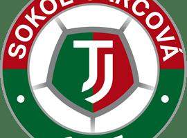 Sokol Jarcová