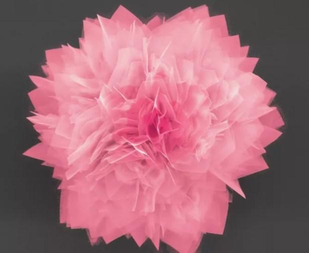 nano-Flower-solar-cells
