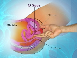 working the g spot