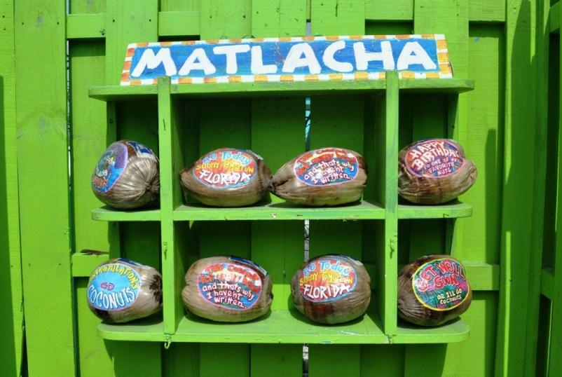 Why Mail a Postcard When You Can Send a Leoma Lovegrove Coconut