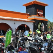 There's No Crying on a Harley-Davidson, But I Did Anyway