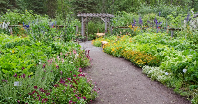 At or for the Alaska Botanical Garden in Anchorage Alaska