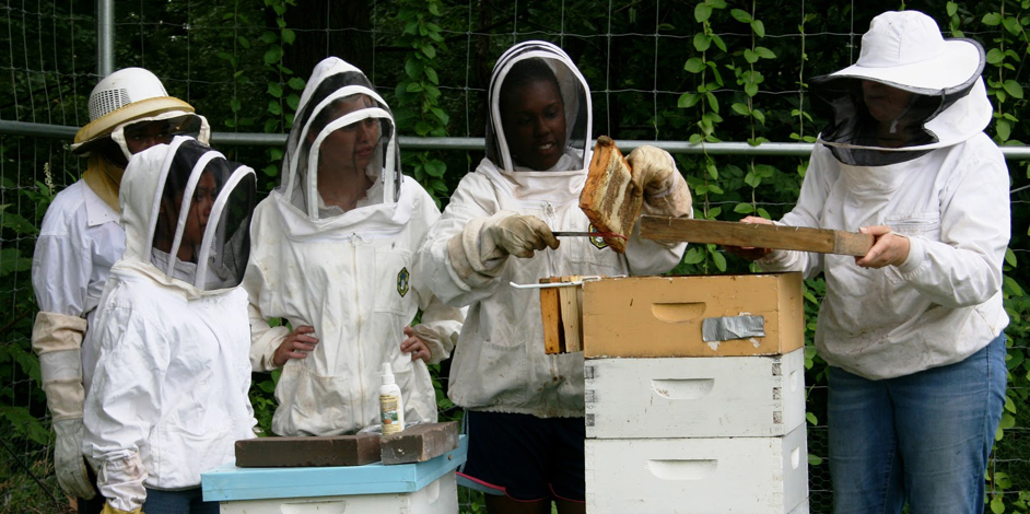 botanic-garden-offers-summer-youth-internship