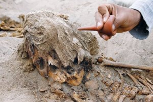 Peru Skull