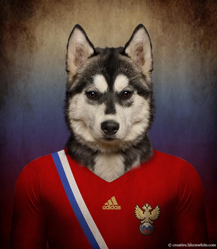 caes-selecao-russia