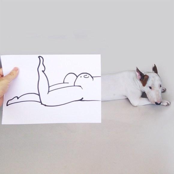 Cães e desenhos (3)