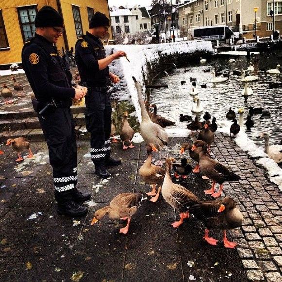Polícia de Reykjavík - Islândia 1