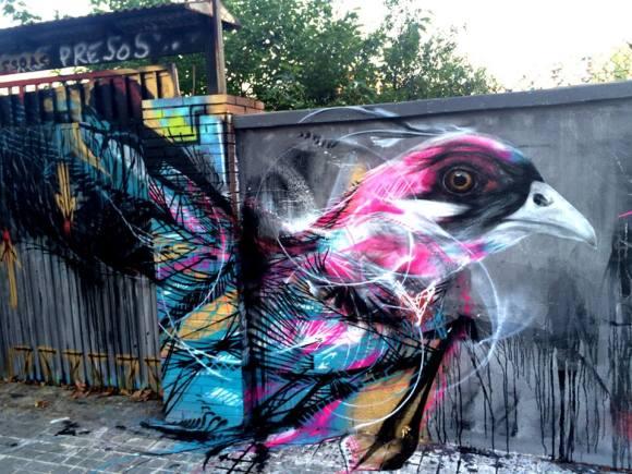 grafite spray pássaros (5)