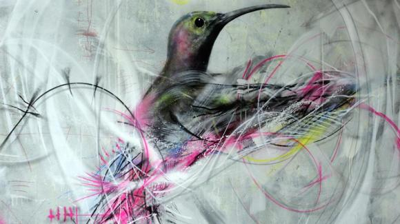 grafite spray pássaros (6)