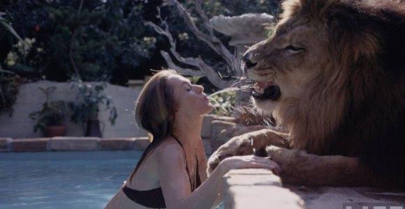 Você já se imaginou tendo um leão de estimação? Essa família já!