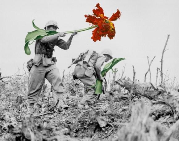 flores na guerra (1)