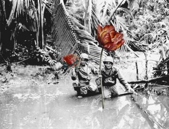 flores na guerra (3)