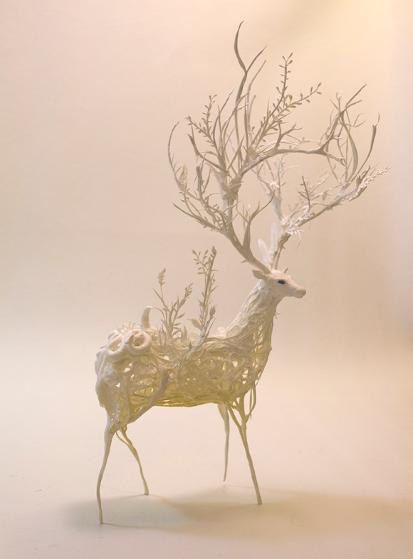 stag2.11[1]