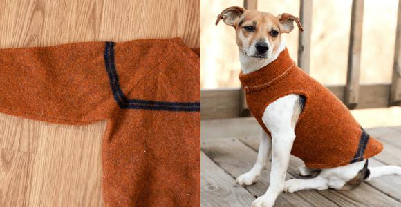 Transforme uma blusa velha em uma roupa maneira para seu cachorro