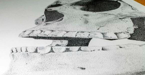 Artista brasileiro faz crânio humano 'surgir' com milhares de pontos e mais de 50h de trabalho