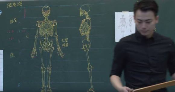Desenhos de anatomia 6