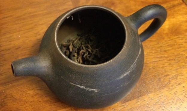 camphor-in-pot