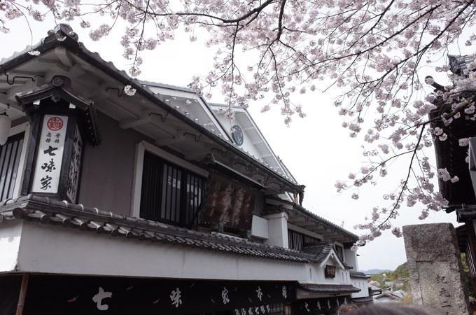 kyo_ki21