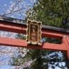 奈良の桜で名所の「氷室神社」とおすすめカフェ3選!