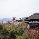 京都で宿泊するのに素泊まりできて安いおしゃれな宿おすすめ7選!
