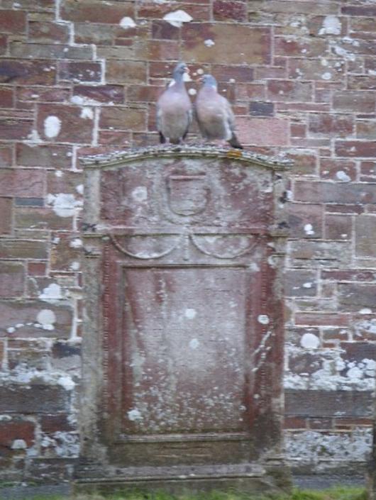 Love birds on gravestone. Something about Dartmoor