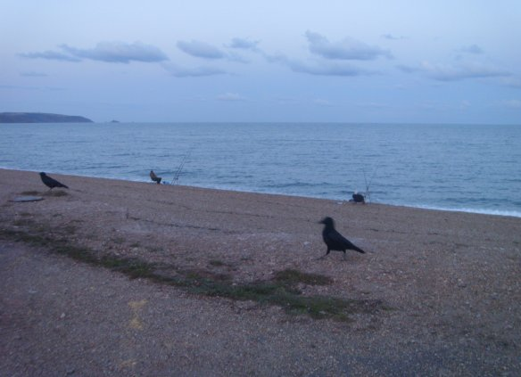 torcross-fisherman-and-crows-something-about-dartmoor