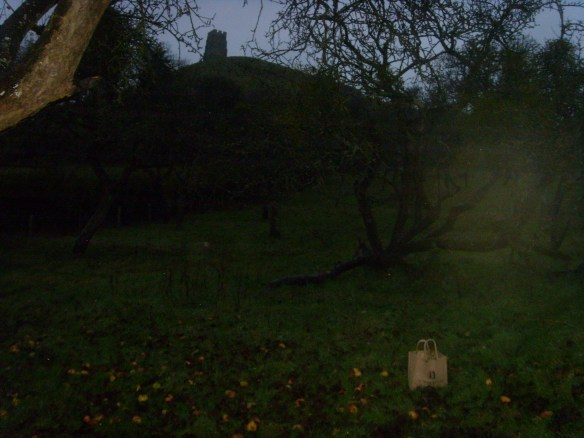 Inside the Avalon Orchard - Glastonbury Tor.
