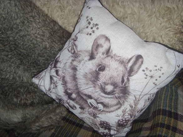 next-new-season-harvest-mouse-cushion-something-about-dartmoor