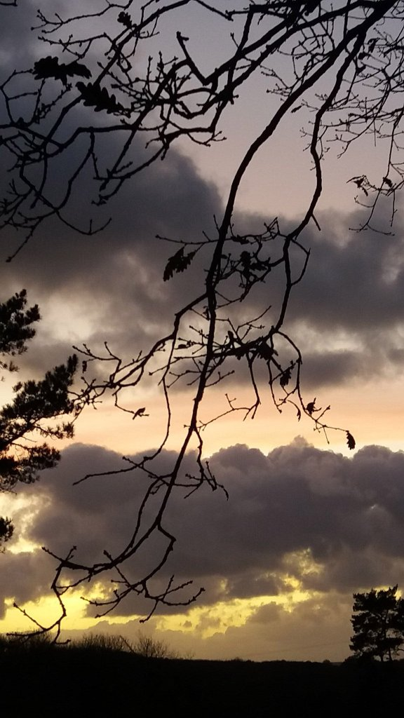 Vestiges of a day - 12-11-2017 - Something about Dartmoor