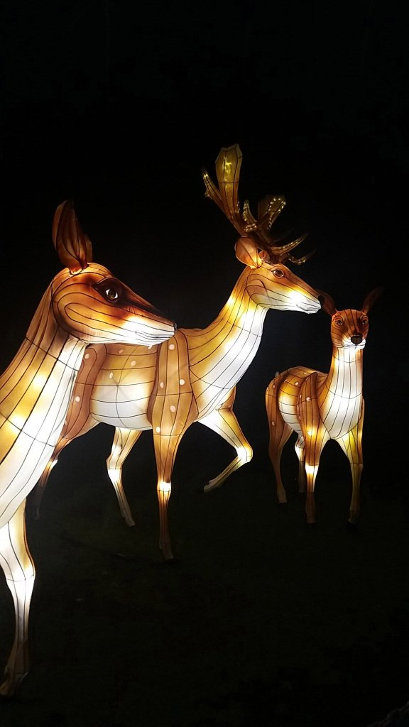 Longleat Festival Of Light. Deer park! (1)