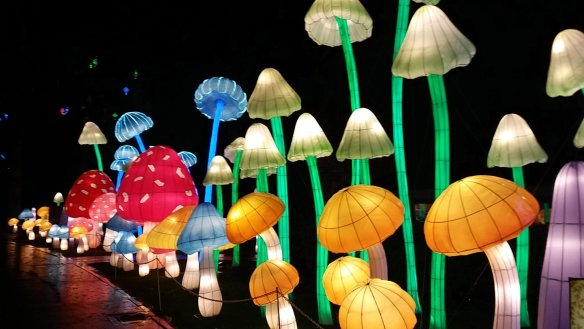 Longleat Festival Of Light. Toadstools