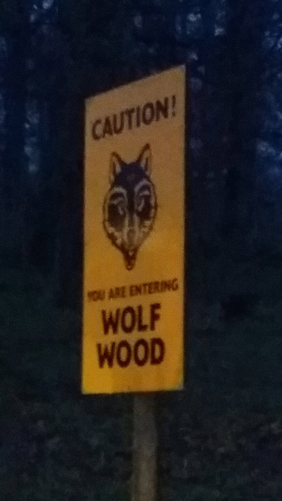Longleat Festival Of Light. Wolf Wood.