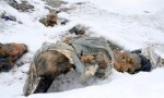 http://sometimes-interesting.com/2011/06/29/over-200-dead-bodies-on-mount-everest/