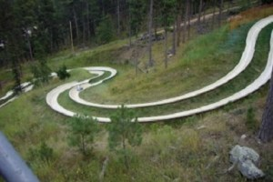 Action_Park_Alpine_Slide-2