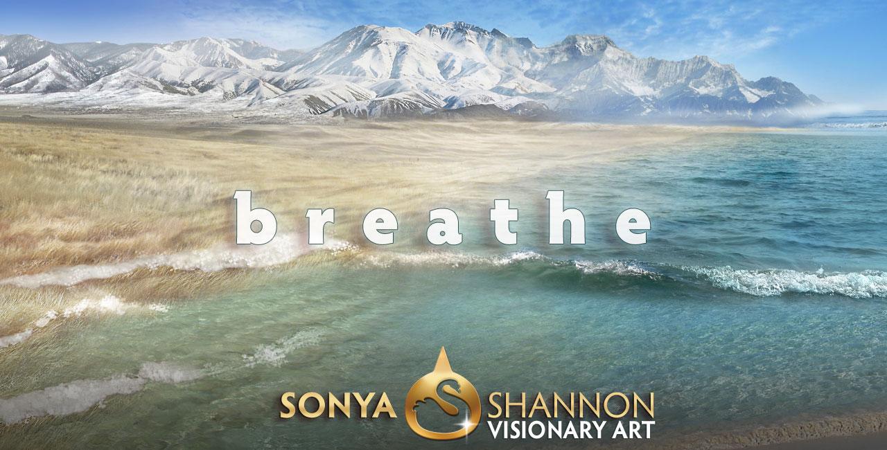 Prairie Ocean by Sonya Shannon