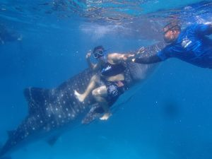 E with the Whale Shark