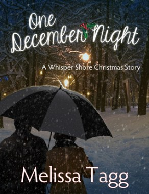 Book Cover: One December Night