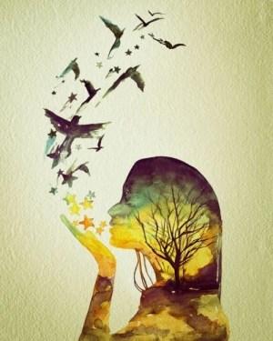 art-beauty-birds-color-Favim.com-623188