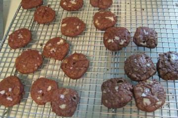 lj042410cookies16