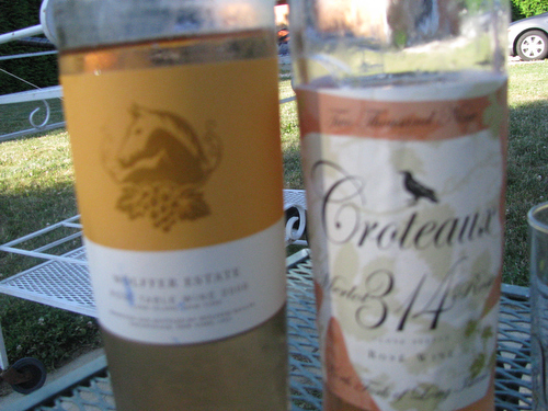 Rose Blind Tasting: Which Long Island Wine Will We Choose?