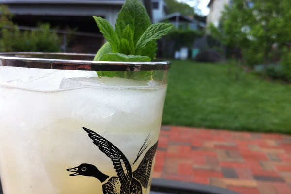 First Cocktails on the New Patio: Gin Gin Mules